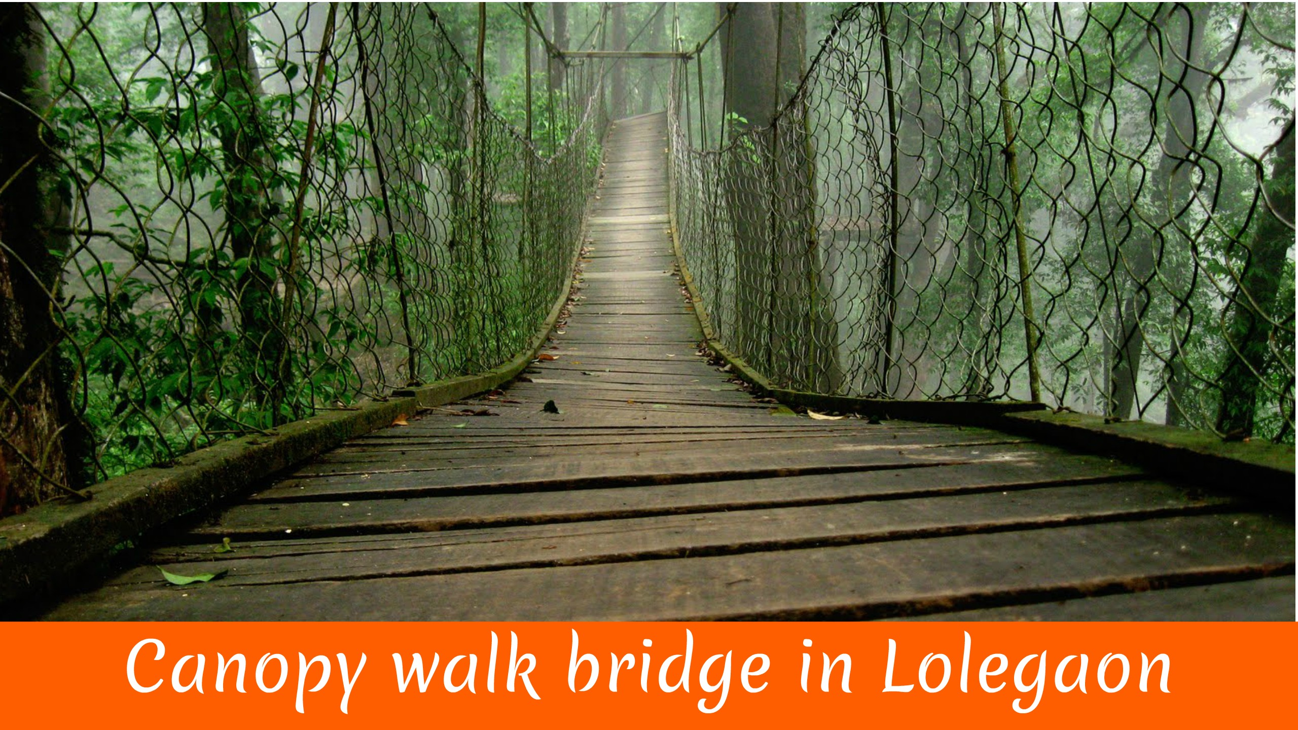 Canopy walk bridge in Loleygaon